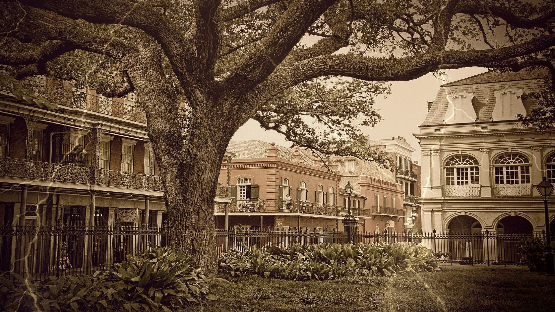 5 of the Most Haunted in New Orleans USA: Phantoms of the Crescent City!