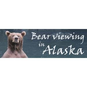 bear-viewing-alaska